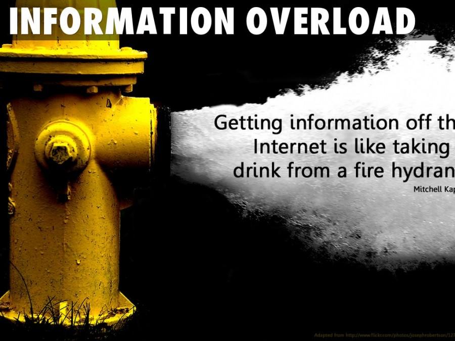 information-overload-mitchell-kapor